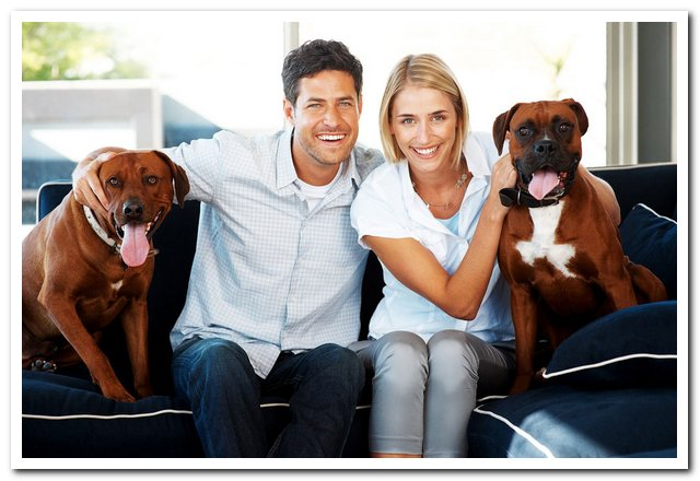Carpet & rug clean up services in Long Beach