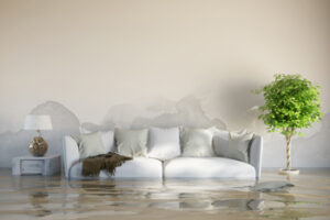 Take Water Damage Restoration services by Mark It Clean