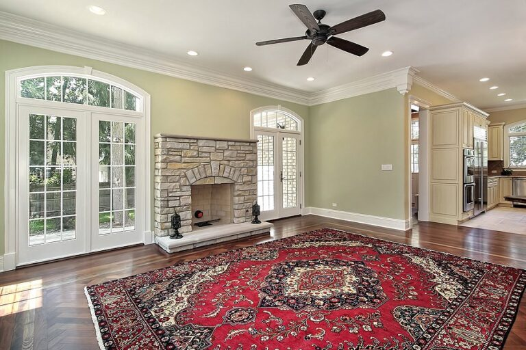 Rug clean up services