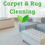 chewing gum removing from carpet rug or upholstery